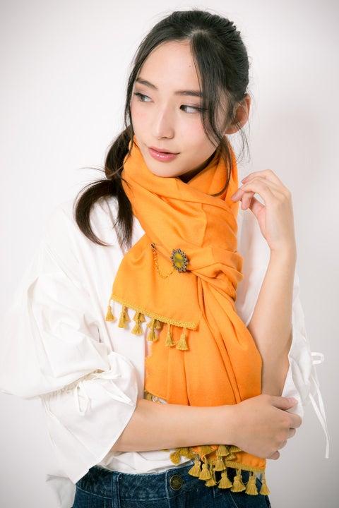 孫悟空 モデル ストール&ピンセット