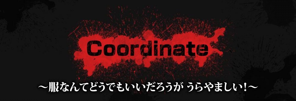 Coordinate ~服なんてどうでもいいだろうがうらやましい!~