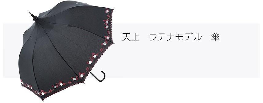 天上 ウテナモデル 傘